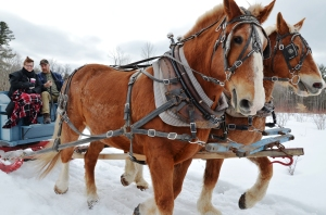 My First Sleigh Ride